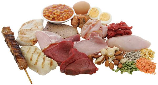 proteinli gidalar