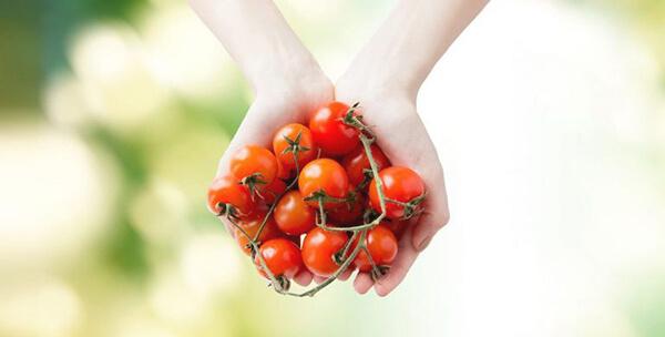 domatesin cilde faydalari