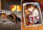 bebek ve hayvanlarin dostlugu