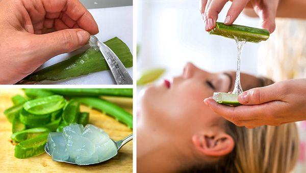 aloe vera nasıl kullanilir