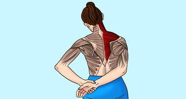 boyun ve omuz gerginligi icin egzersiz hareketleri