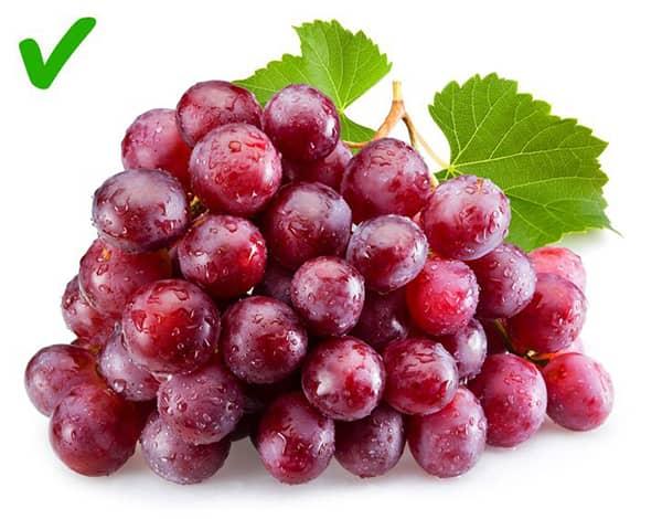 pankreas sagligina iyi gelen yiyecekler