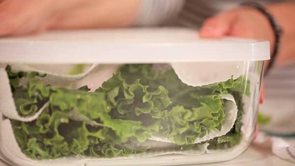 sebzelerin tazeligini korumak