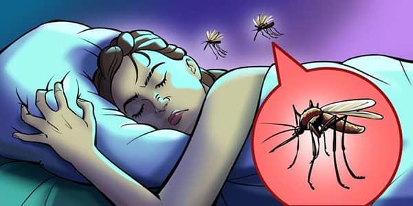 sivrisinekler neden vizildar